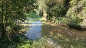 Rio Borosa Ferraba Cazorla